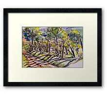 Vineyard, early morning. La Vigna. Italy. Pen and wash 2010Ⓒ 42x32cm framed. Framed Print