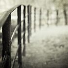 The path by AngelaFanton