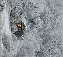 Snowy Cabin by SOIL