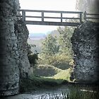 Pevensey Castle (1) .. The Entry by Larry Lingard-Davis