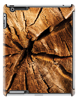 Cracked Wood by RainaRaina