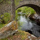 Plodder River- Scotland by Kylie  Sheahen