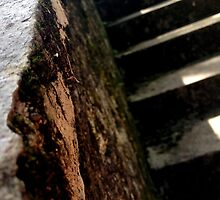 Stone stairs by erison103