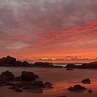 Port Macquarie  Sunrise by Doug Cliff