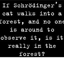 Schrodinger's Cat - Tree Falls in a Forest by jumpingshrimpm