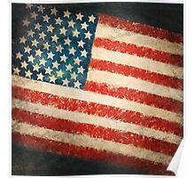 America flag Poster