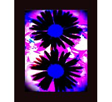 FUNKY IPHONE COVER - TWO DAISIES Photographic Print
