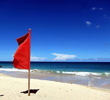 The Red Flag by John Dalkin