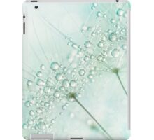 Baby Blue Sparkles iPad Case/Skin
