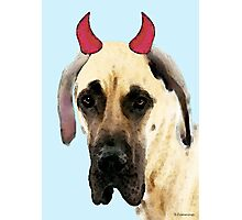 Great Dane Art - Ok Maybe I Did Photographic Print