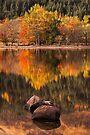 Lubnaig Autumn (2) by Karl Williams