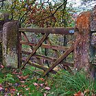 The Gate by Ellesscee
