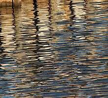 Retaining Wall Reflection 2 by marybedy