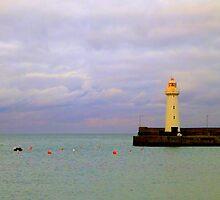 Donaghadee Lighthouse by Fara