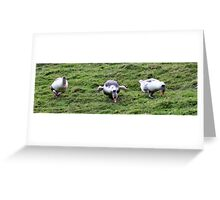 Charging Down the Hill Greeting Card