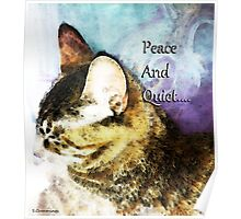 Cat Art - Peace And Quiet Poster