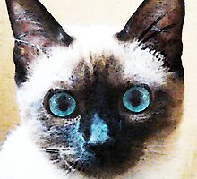 Siamese Cat Art - Black and Tan by Sharon Cummings