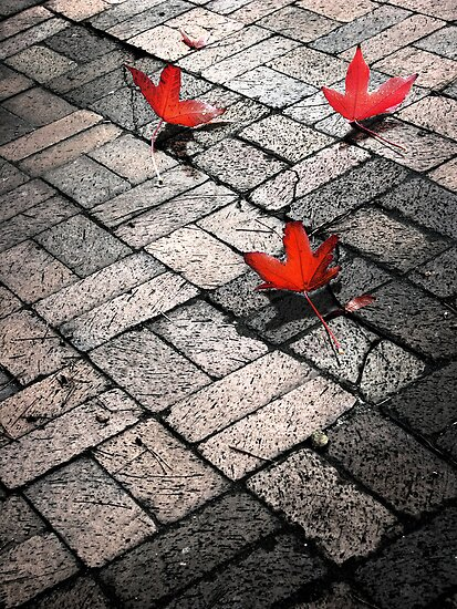 Three Red Leaves 2 by Ellen Cotton