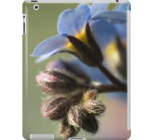 Forget-Me-Nots 4 iPad Case/Skin