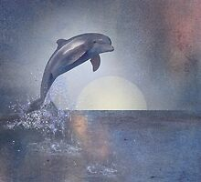 Joy Of The Leaping Dolphin by Carien