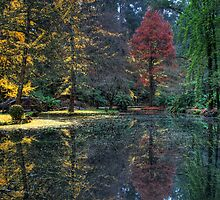 Alfred Nicolas Gardens by Dean Prowd Panoramic Photography