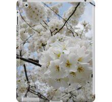 Cherry Blossoms 6 iPad Case/Skin