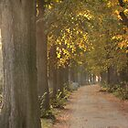Autumn path by Riebelova