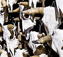 Ipad Case - Cow Skulls by Mark Podger