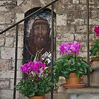 Assisi Saint Street Art by Francis Drake