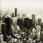 New York Skyline by Vana Shipton