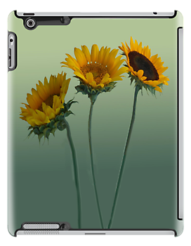 IPAD CASE Sunflowers by Mary Campbell