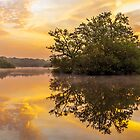 Sunrise in Epping Forest by Gary Rayner