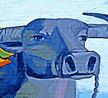 Water Buffalo © by Ethna Gillespie