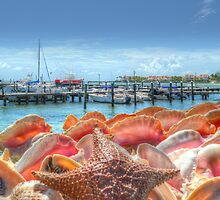 Marina in Nassau, The Bahamas | iPad Case by 242Digital