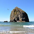 Canon Beach Haystack by LilCreativeSpce