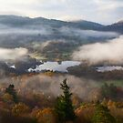 Misty Elterwater by Nick Atkin