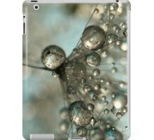 Dandy in Silver & Blue iPad Case/Skin