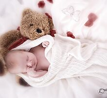 Creature Comforts by Love Through The Lens
