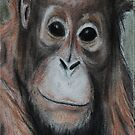 Orangutan Iphone Case by gogston