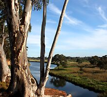 South Werribee - VIC by OzNatureshots