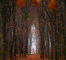 How to open door to paradise . Psalm 127:2 . Author . Andrzej Goszcz by © Andrzej Goszcz,M.D. Ph.D