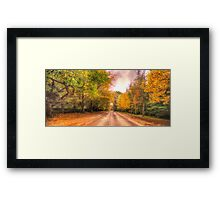 Walk Along The Avenue - Mount Wilson, NSW Australia - The HDR Experience Framed Print