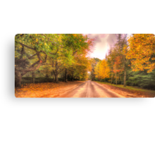 Walk Along The Avenue - Mount Wilson, NSW Australia - The HDR Experience Canvas Print