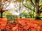 Bench Among The Leaves - Thatcham - Orton by Colin J Williams Photography