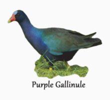 Purple Gallinule Kids Clothes