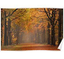 Autumnal highlight Poster