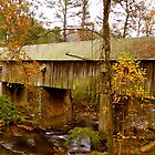 The Covered Bridge Smyrna, GA by JRidings
