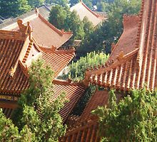 Summer Palace Roof Print by EvaHolder