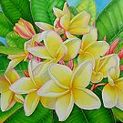 Hawaiian Frangipani by joeyartist