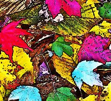 Autumn Leaves © by Ethna Gillespie